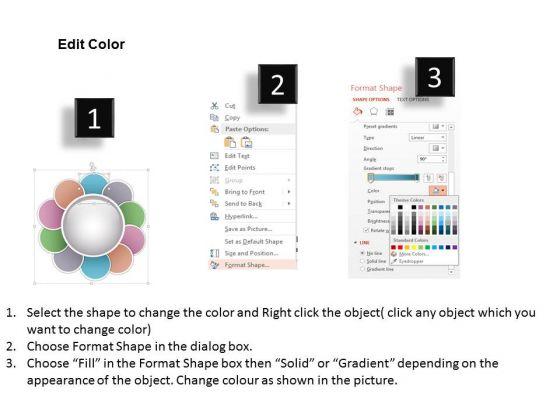 business_diagram_ten_staged_circular_flower_petal_process_diagram_presentation_template_3