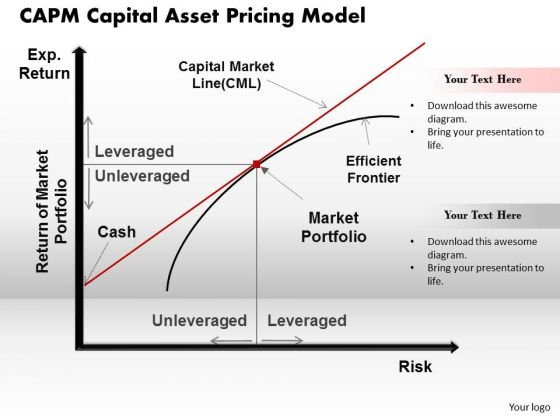 capital asset pricing model efficient market