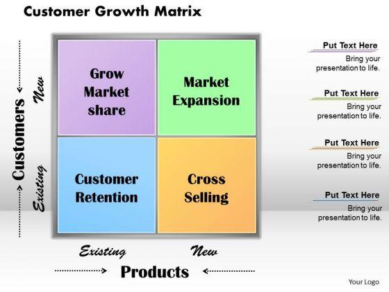 Business Framework Customer Growth Matrix PowerPoint Presentation