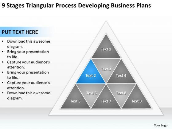 Business Process Diagram Chart Triangular Developing Plans Ppt PowerPoint Slide