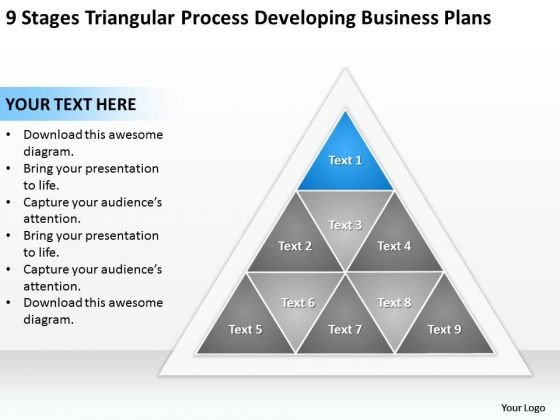 Business Process Diagram Chart Triangular Developing Plans Ppt PowerPoint Slides