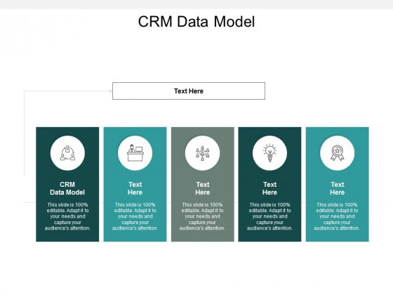CRM Data Model Ppt PowerPoint Presentation Infographics Vector Cpb