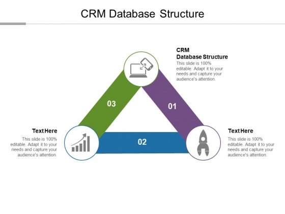 CRM Database Structure Ppt PowerPoint Presentation Example Cpb