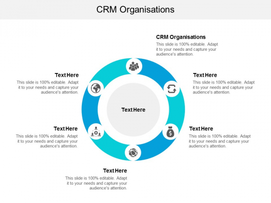 CRM Organisations Ppt PowerPoint Presentation Pictures Ideas Cpb