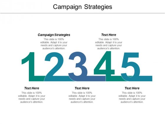 Campaign Strategies Ppt PowerPoint Presentation Styles Portfolio Cpb
