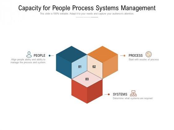 Capacity For People Process Systems Management Ppt PowerPoint Presentation Portfolio Example Introduction PDF