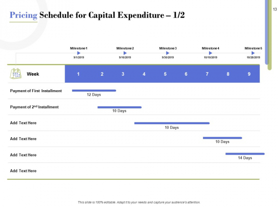 Capex_Proposal_Template_Ppt_PowerPoint_Presentation_Complete_Deck_With_Slides_Slide_13
