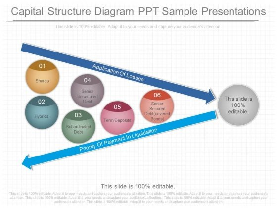 Capital Structure Diagram Ppt Sample Presentations