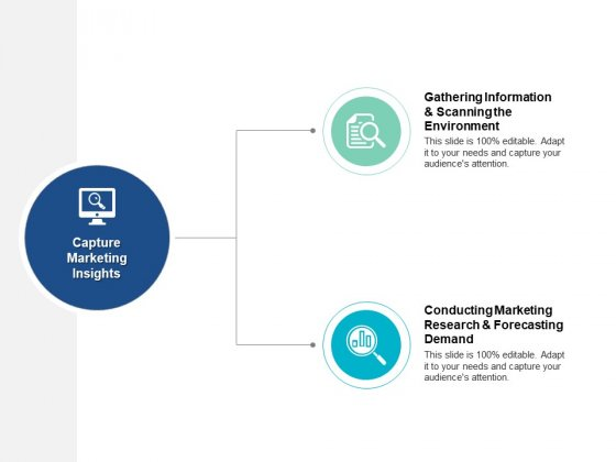 Capture Marketing Insights Ppt PowerPoint Presentation Model Guide
