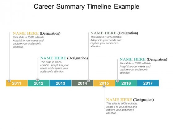 Career Summay Timeline Example Ppt PowerPoint Presentation Infographics File Formats