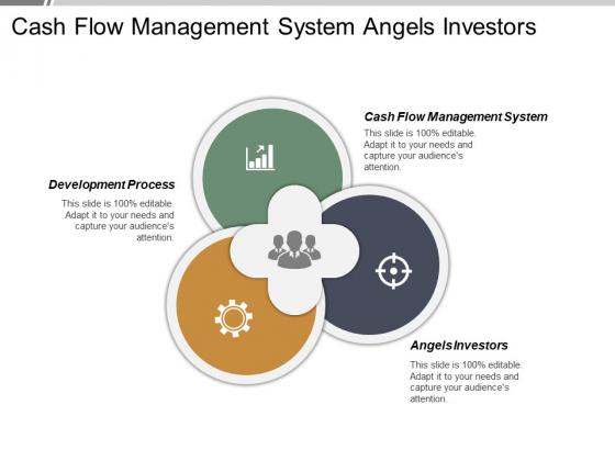 Cash Flow Management System Angels Investors Development Process Ppt PowerPoint Presentation Infographic Template Ideas