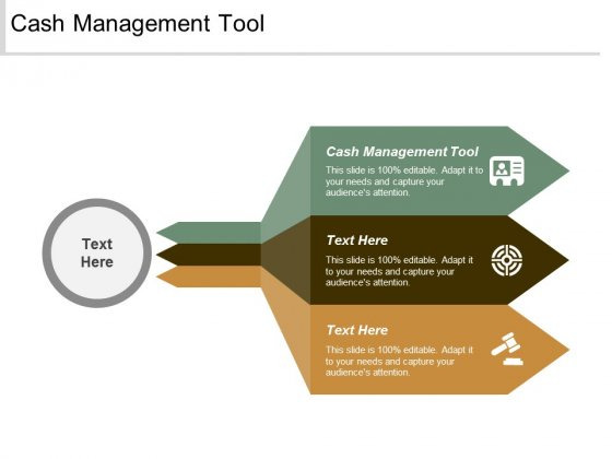 Cash Management Tool Ppt Powerpoint Presentation Slides Designs Cpb
