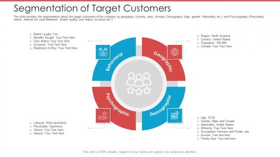 Cash Market Investor Deck Segmentation Of Target Customers Ppt Gallery Template PDF