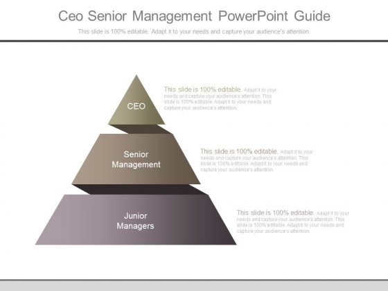 Ceo Senior Management Powerpoint Guide