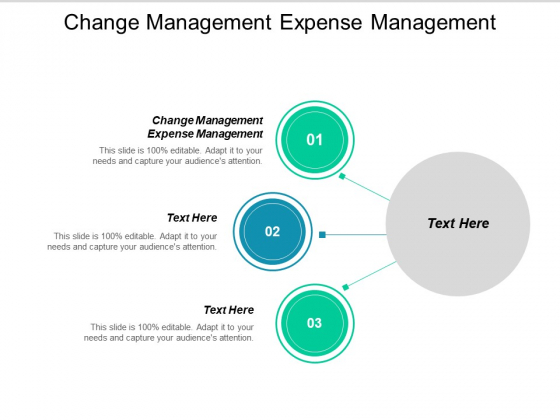 Change Management Expense Management Ppt PowerPoint Presentation Layouts Graphics Template Cpb