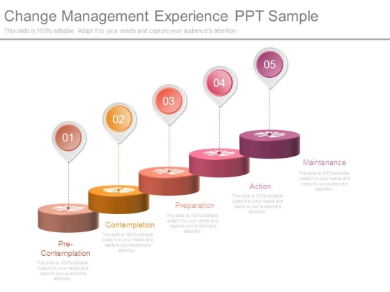 Change Management Experience Ppt Sample