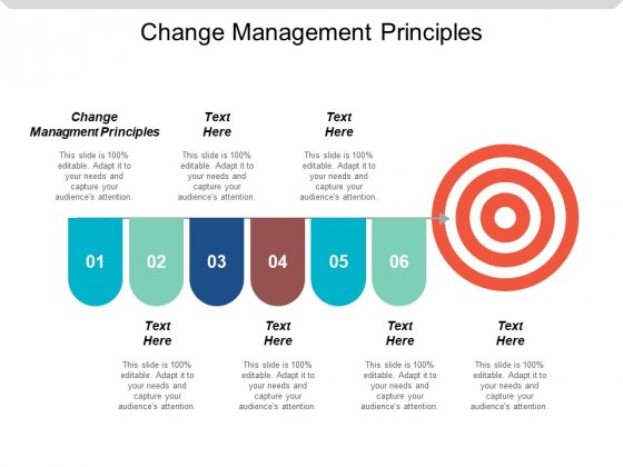 Change Management Principles Ppt Powerpoint Presentation Inspiration Graphics Cpb