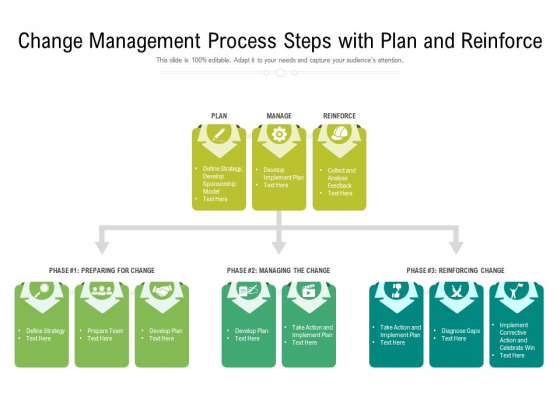 Change Management Process Steps With Plan And Reinforce Ppt PowerPoint Presentation Infographics Sample PDF