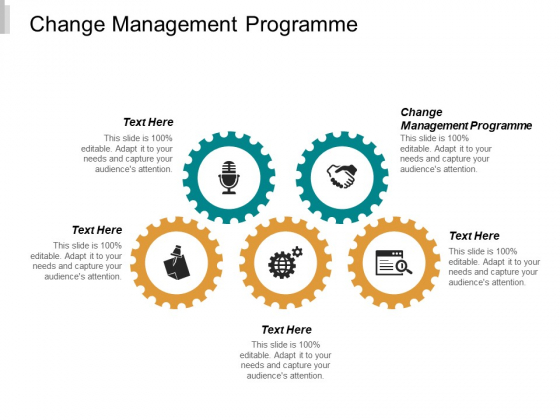 Change Management Programme Ppt PowerPoint Presentation Styles Graphics Example Cpb