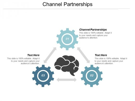 Channel Partnerships Ppt PowerPoint Presentation File Portrait
