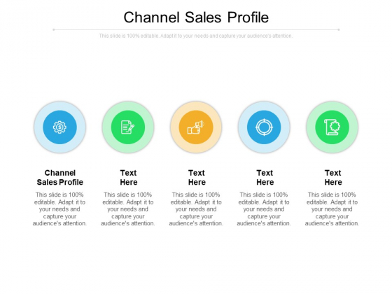 Channel Sales Profile Ppt PowerPoint Presentation Infographic Template Files Cpb Pdf