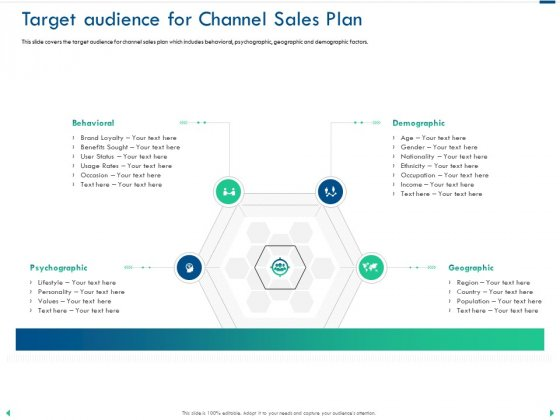 Channel Sales Taking Your Product To Market Target Audience For Channel Sales Plan Inspiration PDF