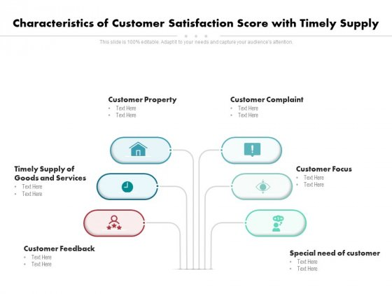 Characteristics Of Customer Satisfaction Score With Timely Supply Ppt PowerPoint Presentation Gallery Examples PDF