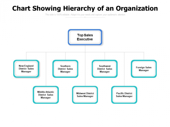 Chart Showing Hierarchy Of An Organization Ppt PowerPoint Presentation Pictures Influencers