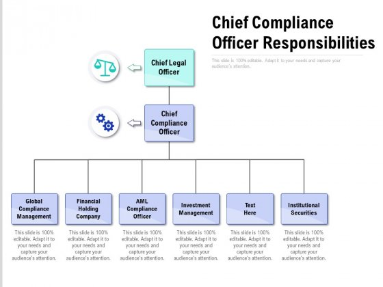 Chief Compliance Officer Responsibilities Ppt Summary Format Ideas PDF