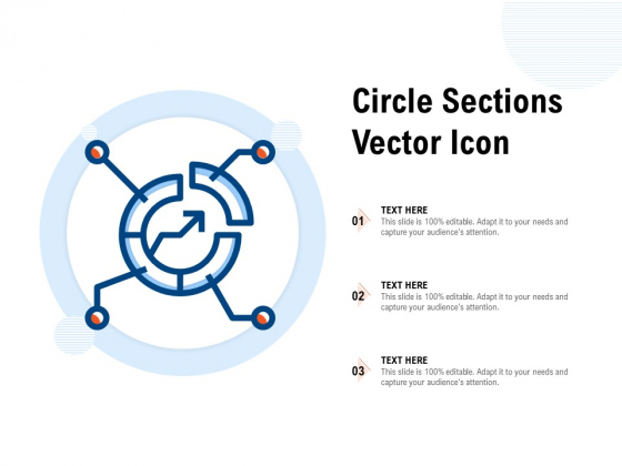 Circle Sections Vector Icon Ppt PowerPoint Presentation Styles Professional