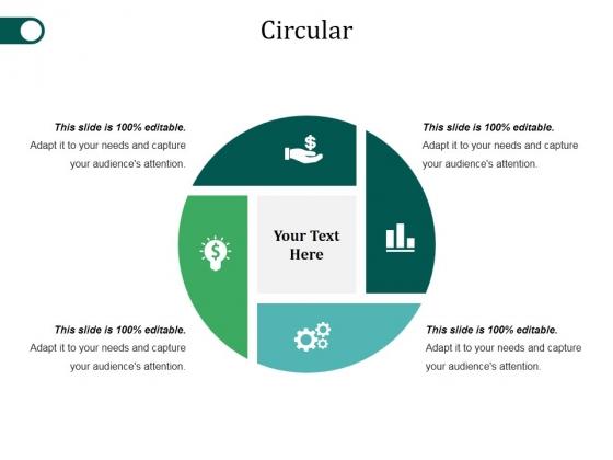 Circular Ppt PowerPoint Presentation Gallery Visuals