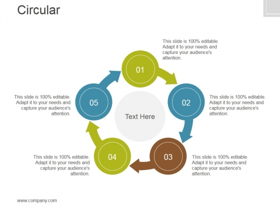 Circular Ppt PowerPoint Presentation Icon
