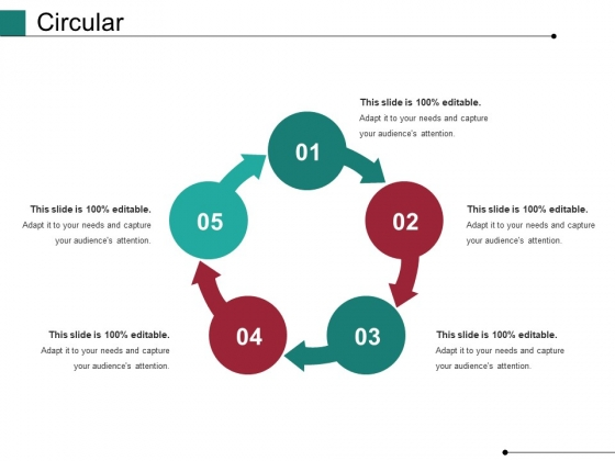 Circular Ppt PowerPoint Presentation Infographic Template Graphics Design
