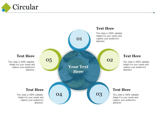 Circular Ppt PowerPoint Presentation Infographic Template Information