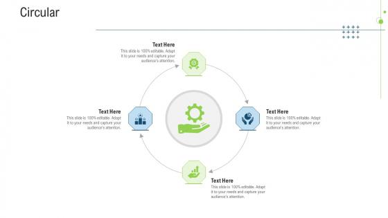 Circular Ppt Professional Examples PDF