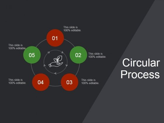 Circular Process Ppt PowerPoint Presentation Deck