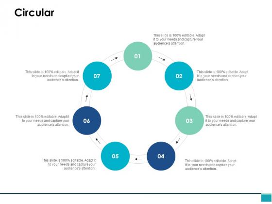 Circular Process Ppt PowerPoint Presentation Portfolio Portrait