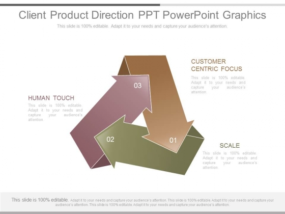 Client Product Direction Ppt Powerpoint Graphics
