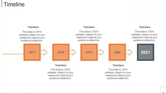 Collaborative Workplace Investor Capitalizing Timeline Professional PDF
