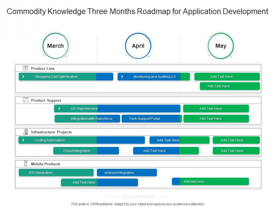 Commodity Knowledge Three Months Roadmap For Application Development Sample