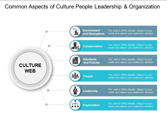 Common Aspects Of Culture People Leadership And Organization Ppt PowerPoint Presentation Show Inspiration