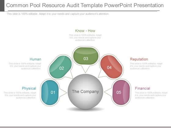 Common Pool Resource Audit Template Powerpoint Presentation