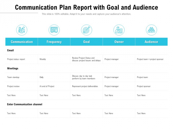 Communication Plan Report With Goal And Audience Ppt PowerPoint Presentation Professional Gallery PDF