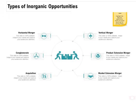 Company Amalgamation Types Of Inorganic Opportunities Ppt Model Summary PDF