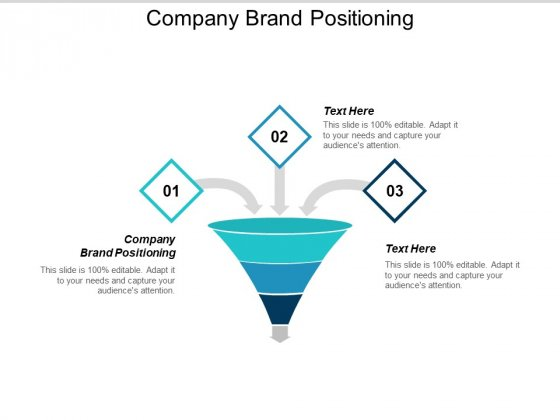 Company Brand Positioning Ppt PowerPoint Presentation Show Samples Cpb