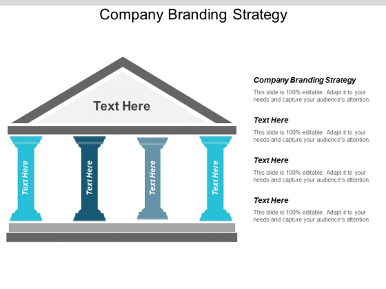 Company Branding Strategy Ppt PowerPoint Presentation Layouts Example
