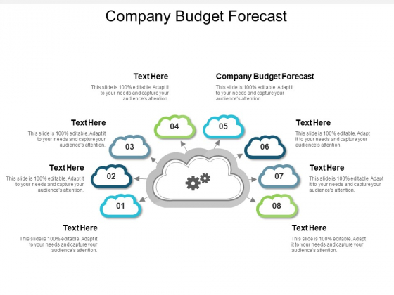 Company Budget Forecast Ppt PowerPoint Presentation Layouts Graphics Pictures Cpb