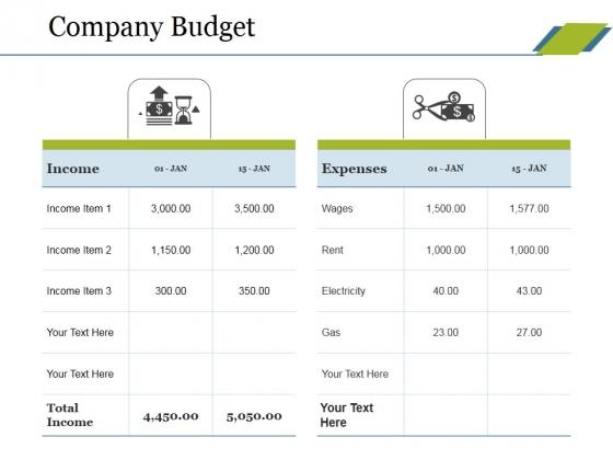Company Budget Ppt PowerPoint Presentation Ideas Design Inspiration