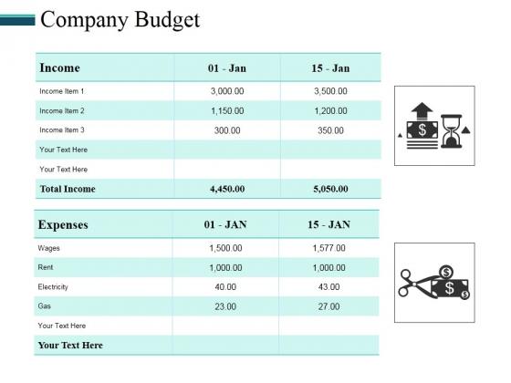 Company Budget Ppt PowerPoint Presentation Model