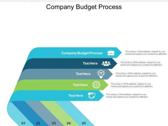 Company Budget Process Ppt PowerPoint Presentation Styles Tips Cpb